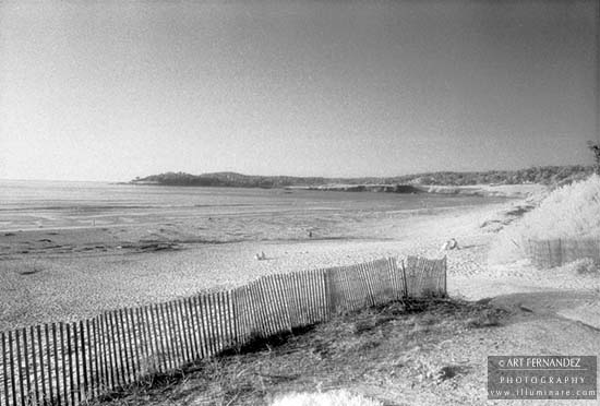 Carmel River State Beach (Infrared), 1992