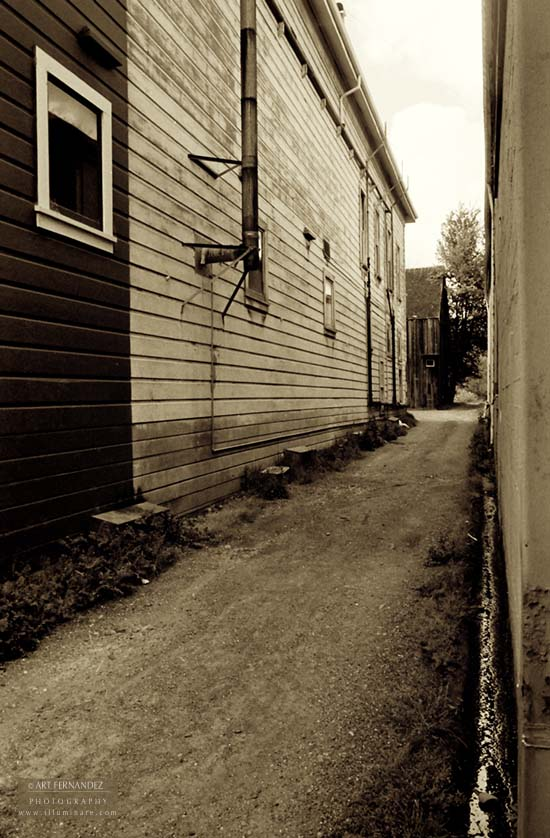 Back Alley (Sepia), Ferndale, CA
