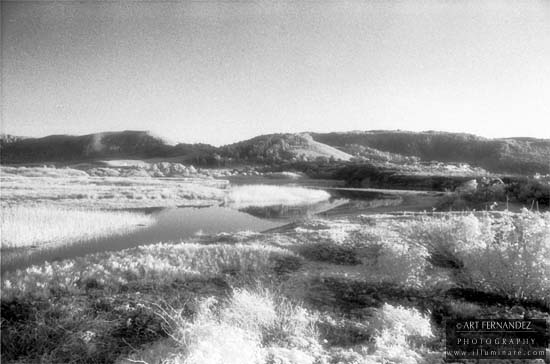 Carmel River Marsh (Infrared), 1992