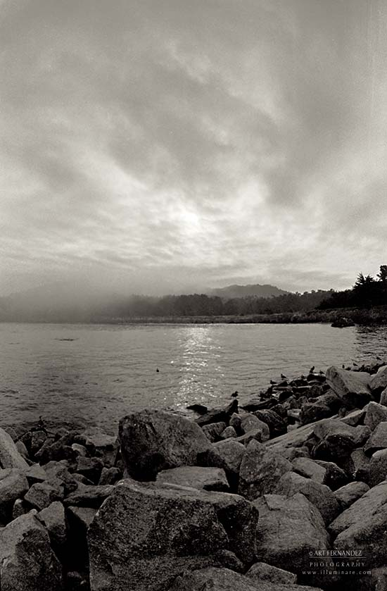 Fog Clearing On Whaler's Cove, 2006