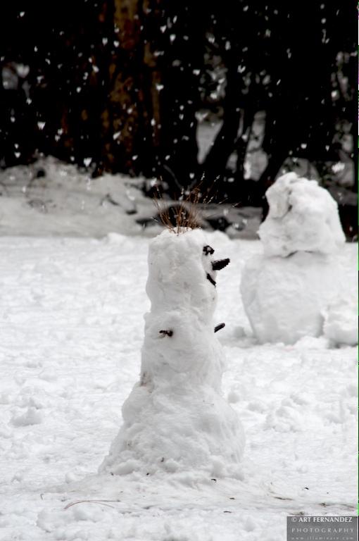 Snowman at Awahnee, Yosemite National Park