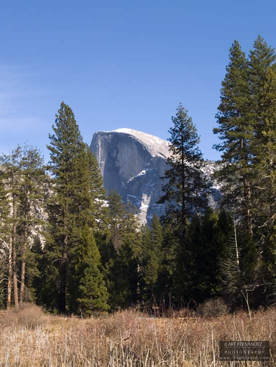 Half Dome from the Meadows, Yosemite, 2006