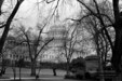 Early Spring, U.S. Capitol, 1989